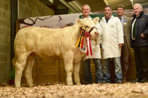 res-junior-female-calf-champion-cloughbrack-majestic-2-with-mattie-and-kevin-kelly-colin-wight-judge-and-kevin-maguire-president-iccs