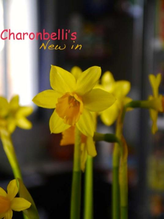 new-in-shopping-printanier-inside3-charonbellis-blog-mode-et-beautecc81