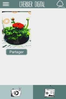 L'herbier digital de l'Institut Klorane (5)- Charonbelli's blog lifestyle
