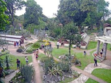 visiter-rio-jardin-botanique2-charonbellis