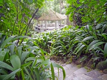 visiter-rio-jardin-botanique3-charonbellis