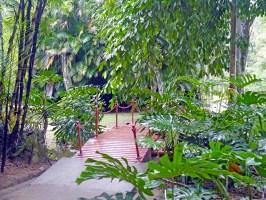 visiter-rio-jardin-botanique7-charonbellis