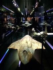 Vaisseaux-Star-Wars-identities-exhibition-O2-London-Charonbellis