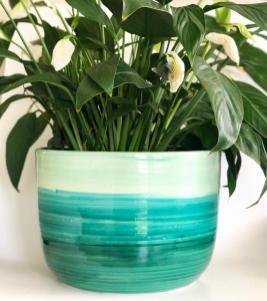 Pot-vert-de-planteur-SamanthaBoothArt-Etsy-Charonbellis