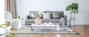 grey sofa in contemporary renovated room