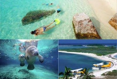 florida-ACTIVITY-snorkel-with-fish