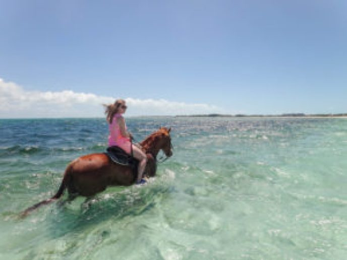 Turks & Caicos Horseback Riding