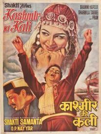 Film Poster of : Kashmir Ki Kali - 1964