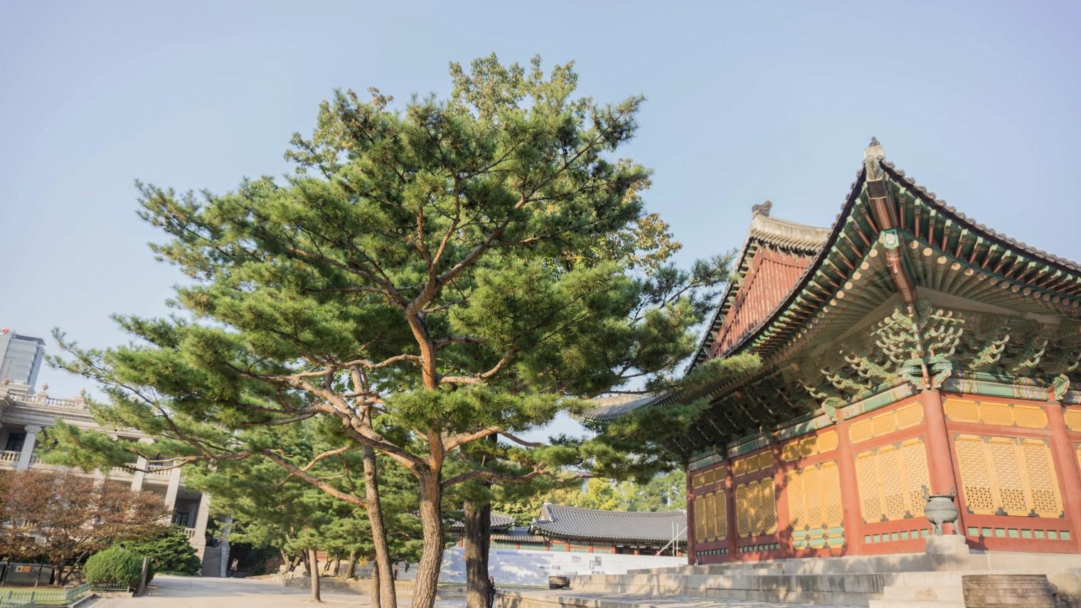 South Korea - Jeju Island and Seoul Experience