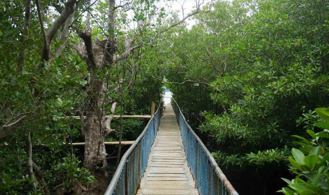 Cabucgayan Boardwalk - Biliran Province