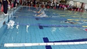 イルカ杯に行って来ました。 往路を進む背泳ぎの選手/どこまでもアマチュア