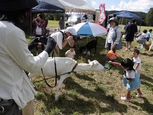 六呂師高原アルプス音楽祭2014 白やぎさんに葉っぱをあげるお嬢ちゃん/どこまでもアマチュア