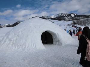 さかだに雪まつり 巨大かまくら/どこまでもアマチュア