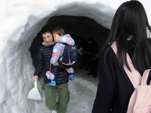 さかだに雪まつり 巨大かまくらから出てきた親子/どこまでもアマチュア