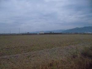 足羽駅はこんなところでした。 田んぼの真ん中に駅/どこまでもアマチュア