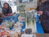 白ネギと白菜