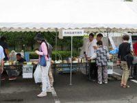 岡崎医療刑務所
