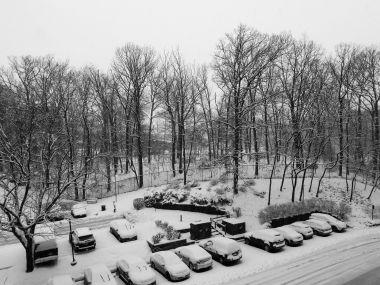 winterstormgia-9