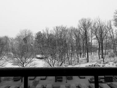 winterstormgia