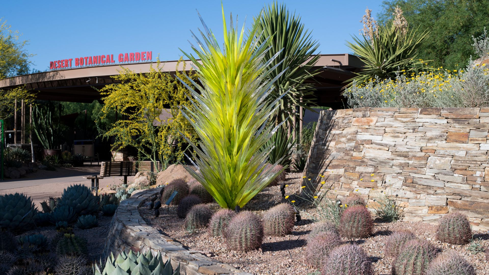Cacti and landscaping to the right with an entrance in the back.
