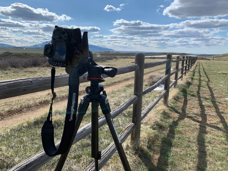 My camera on a tripod, aimed at a fence line.