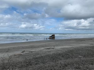A view of the Peter Iredale shipwreck from the sand dune by the parking lot.
