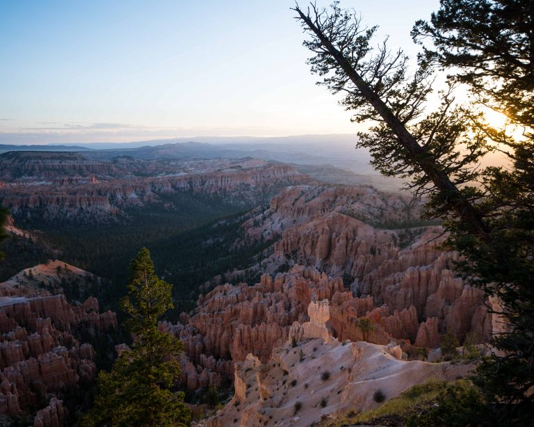 Sunrise making the hoodoos glow.