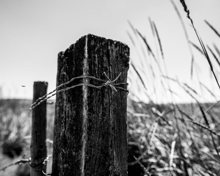 A black and white photo with a fence post wrapped in barbed wire knot.