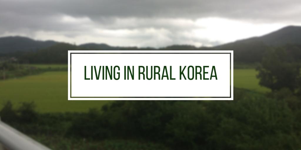 My Struggle Living in Rural Korea