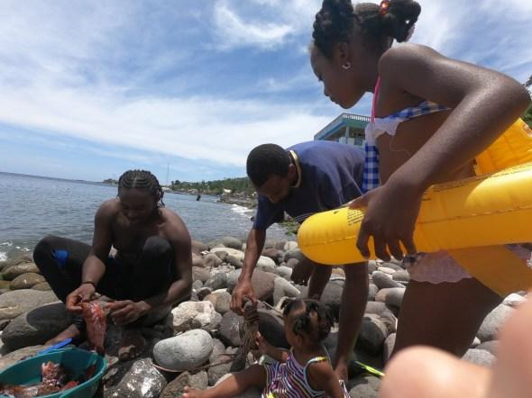 Alle bewundern die gefangenen Fische