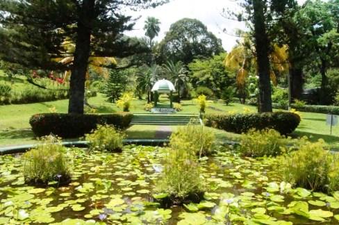 Botanical Garden Kingstown, St Vincent