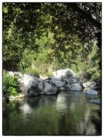 Callosa14_Snapseed