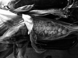 Corn from grillmaster boyfriend