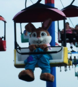 When I saw the bunny, I thought maybe I had heat stroke or something.