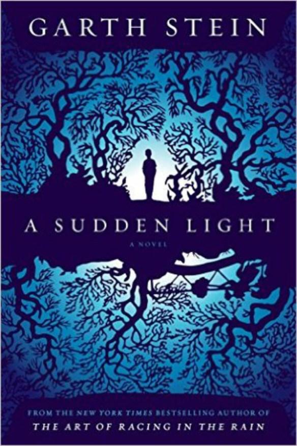 A Sudden Light Book Review
