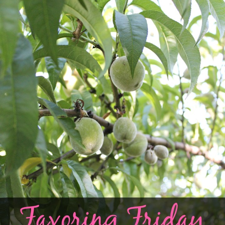 Favoring Friday, First of June