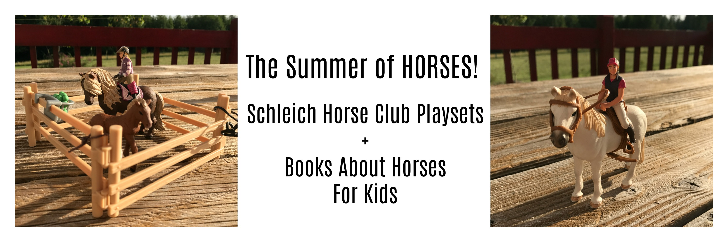 Play And Learn With Schleich Horse Play Sets Books About