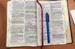 Beauty of the Word
