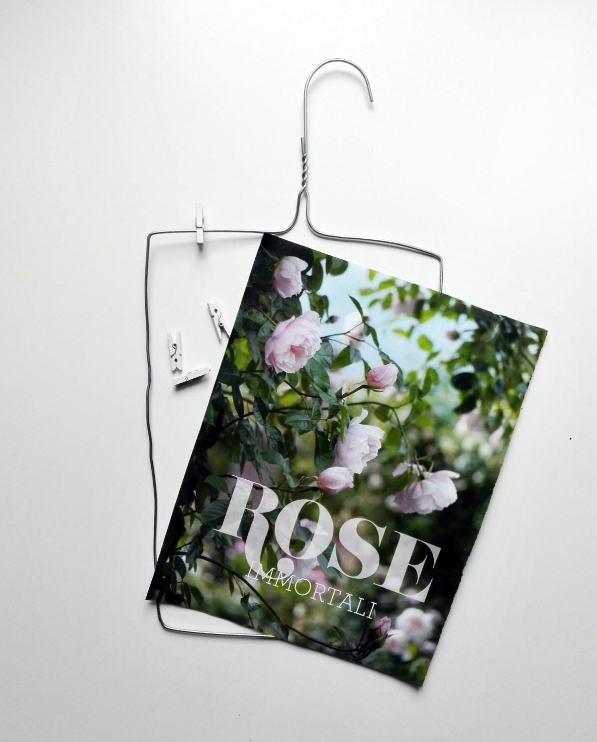gruccia metallo decorativa con pagina di giornale