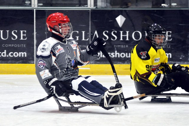7_Sheffield_Steelkings_v_Cardiff_Huskies_-_Matt_Clarkson[1]
