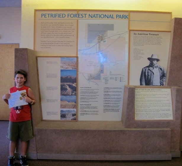 hunter petrified forest jnr ranger