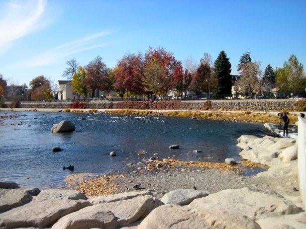 reno river park 10