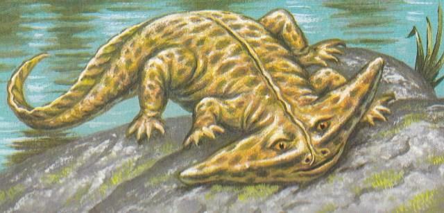 Dinosaurier - Diplocaulus