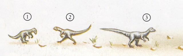 Dinosaurier - Klein