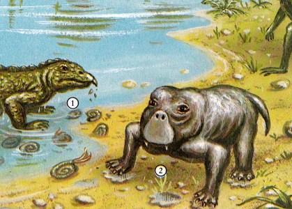Dinosaurier - Lystrosaurus