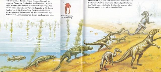 Dinosaurier - evolution