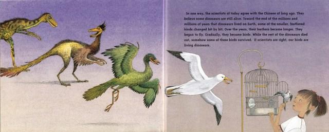 Bird evolution spread