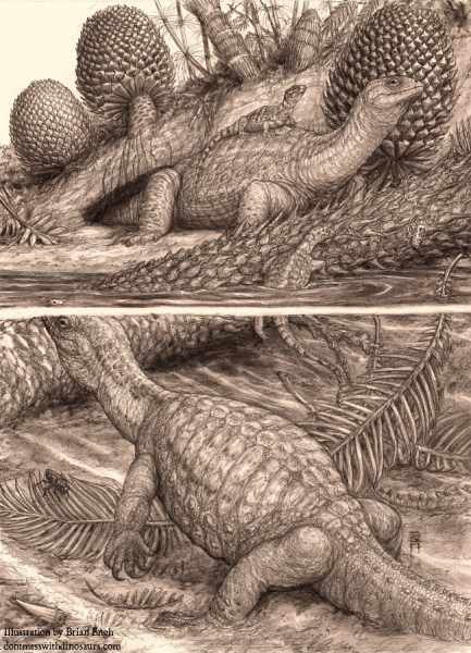 Pappochelys (pencil) by Brian Engh