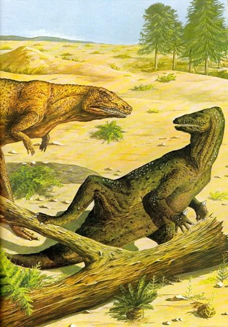Megalosaurus by Ann Baum
