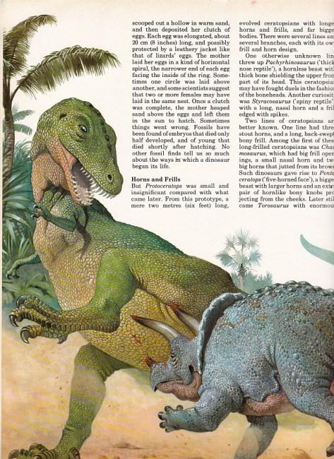 Tyrannosaurus and Triceratops by Bernard Robinson
